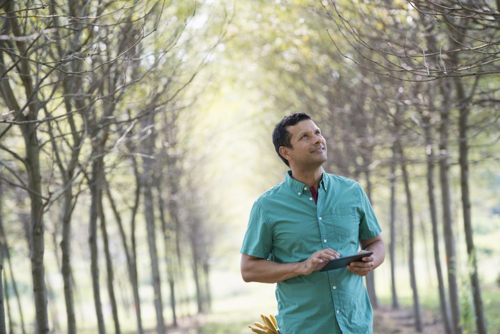Man walking through forrest on ipad | Featured Image For Purchasing Additional Property? Land Tax Might Be a Burden.blog