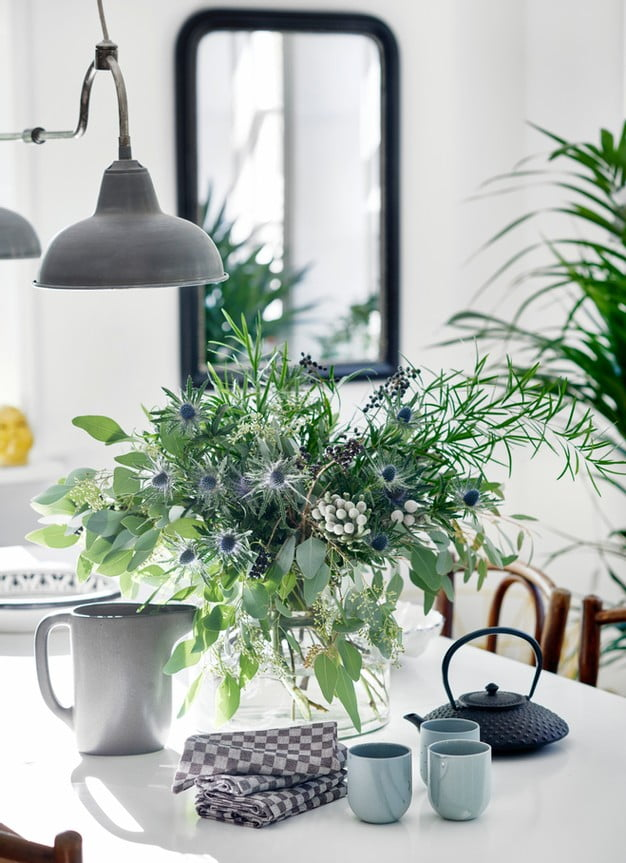 Plant on desk under lamp | Featured Image For Reasons Why You Should Refinance Your Home Loan blog